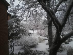 snow garder